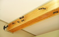 Rafters with Ants